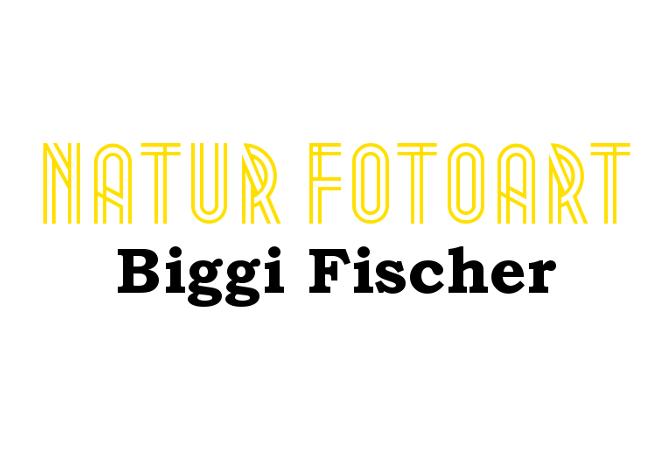 Das Logo von Natur Fotoart