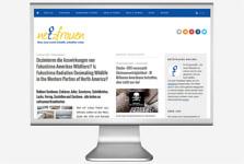 Webseitenbild Netzfrauen